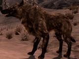 Сніговий вовк (Skyrim)
