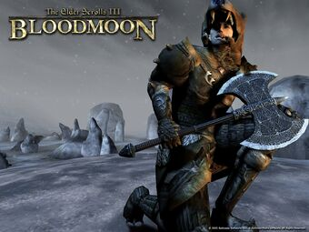 Шпалери до гри The Elder Scrolls III Bloodmoon