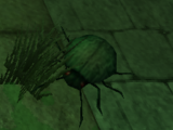Plagued Beetle