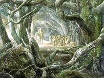 Bosque negro2