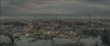 Cienagas-de-los-muertos-paisaje