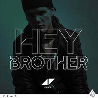 Avicii - Hey Brother (logo)