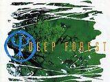 Deep Forest - Evo Devo (2016)