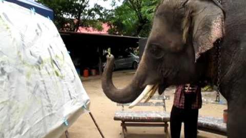 Elephant Painting at Elephantstay