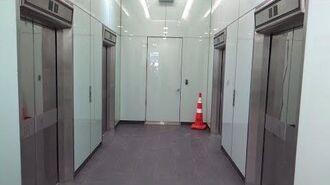 Floor Passing Beep! OTIS Elevonic 411M Traction Lifts Elevators @ Sovereign House, Wellington, NZ-0