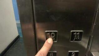 Dewhurst black buttons