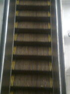 Historic OTIS Wooden Steps Escalator (Town Hall Station, Sydney 2)