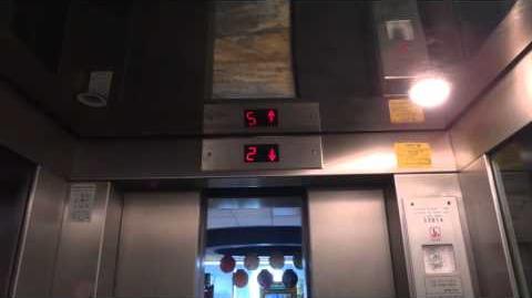 Retake - Tal hydraulic elevator at Bola Bowling in Holon