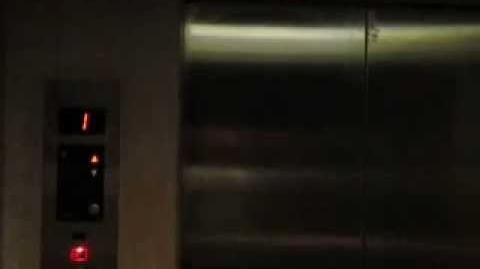 "Retake 2 Sigma ""Talking"" Traction Elevator at W Hotel Bali (Hotel)"