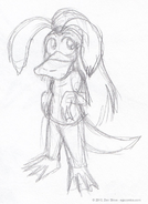 Platypus Grace