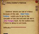 Soldier's Mattress