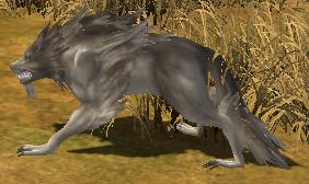 Raid beast