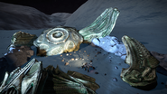 Thargoid Interceptor Alien Crash Site 2