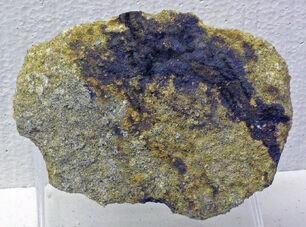 Selenium in sandstone