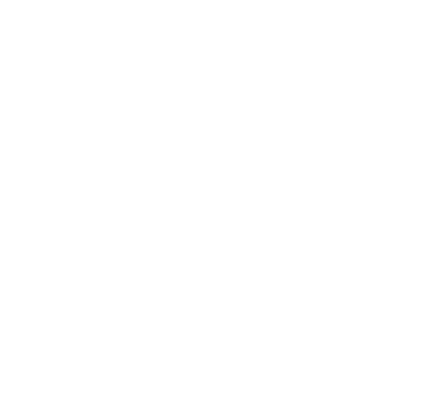 Golden elite pilots symbol with the word founder across the centre available only to kickstarter pledgees who pledged 150 gbp or above