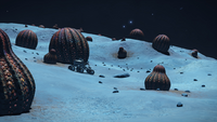 Alien-Anemones-and-SRV
