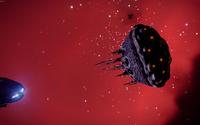 ED-Bulb-Mollusc