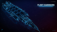 Fleet Carrier schematic view