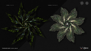 Thargoid-Hydra-and-Cyclops-Interceptors