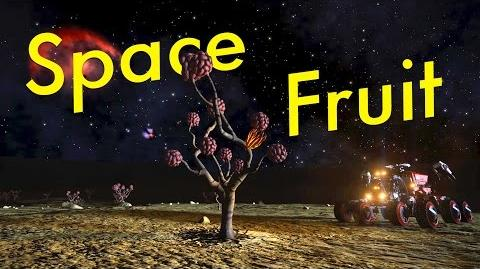 Space Fruit Catalogue Elite Dangerous