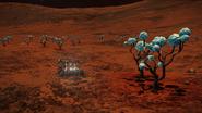 Alien-Brain-Trees-and-SRV