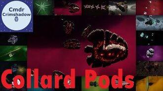 Collard Pods Of The Inner Orion - Elite Dangerous Codex