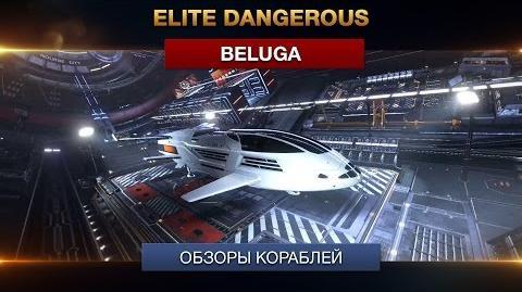 Elite Dangerous - Обзоры кораблей - Beluga