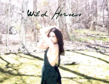 File:Wildhorses.jpg