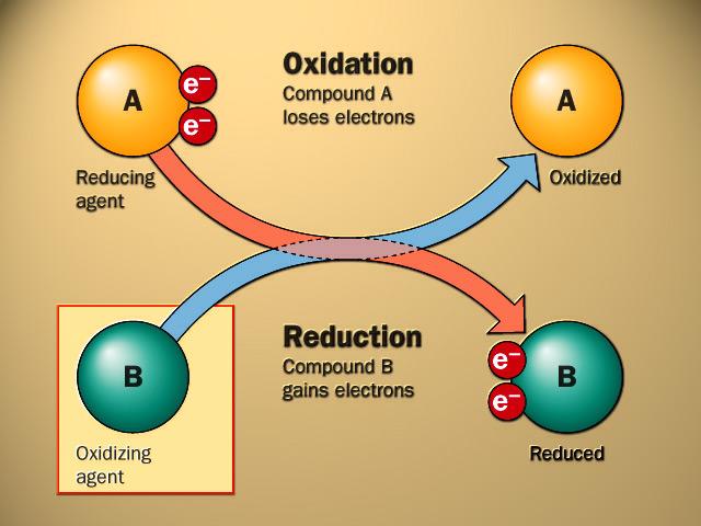 File:En oxidation reduction.jpg