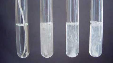 Group 2 Reactions with water - Periodic Properties-0