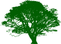 Green-tree-hi