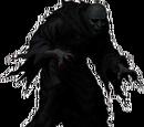 Uhlm Zakir´s Shadow