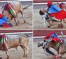 Grave cornada en el cuello a Julio Aparicio en Las Ventas 22/5/10
