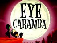 Eyecarambacard