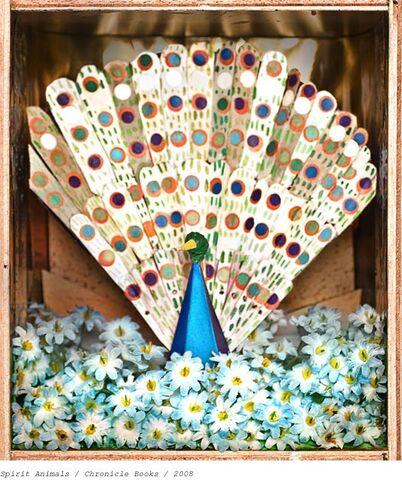 File:Peacock.jpg