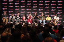 NYCC19-31