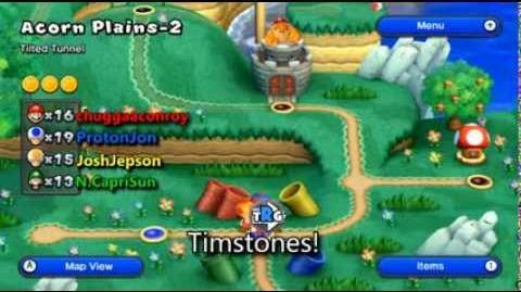 Meet The Timstones