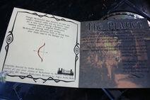 Rare Violin Promo CD Cover Inside