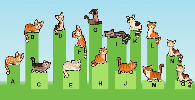 File:Cat examples.jpg