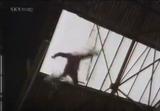 Episode 1197 (29th October 1987)
