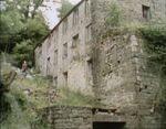 Millhouse1972