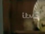 Episode 2237 (31st July 1997)