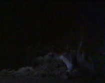 Emmie joe run over 1980