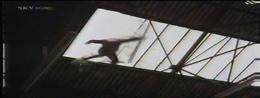 Vlcsnap-2012-11-04-13h19m20s138