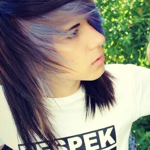 Metin Mysteriouss, the emo boy blogger