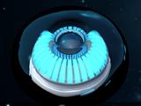 Ionic Shield