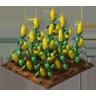 Crop Corn Grown SW Icon