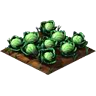 Crop Cabbage Grown SW Icon
