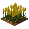 Crop Wheat Grown SW Icon