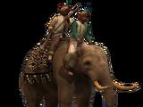 Elephant Musketeers